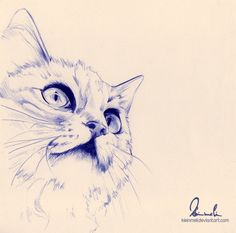 Ballpoint Pen Cat - WIP by kleinmeli on DeviantArt Ballpoint Pen Drawing, Cat Drawing, Pen Sketch, Sketches, Cat Pen, Paint And Drink, Lion Painting, Pen Art, Cat Tattoo