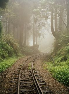 Train Tracks Found on the Forest Floor Bend around a Corner Photographic Print b. National Geographic Travel, Old Trains, Train Pictures, Forest Floor, Train Tracks, Train Rides, Abandoned Places, Railroad Tracks, Positano