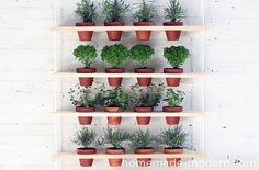 HomeMade Modern DIY Hanging Garden Options