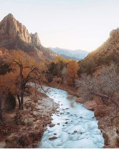 One of my favorite spots in the US. Zion. Photo by @jasoncharleshill #liveauthentic