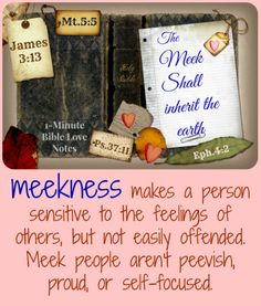 Meekness ...not a popular word in today's self-esteem culture. ~But it's a popular word in God's Book.