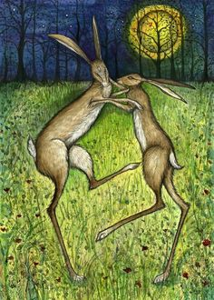 The hare: an animal symbolic of the Moon, because it sleeps during the day, is awake during the night, and because it is very fertile. In the fairy tales and legends of many peoples, the Moon is thus either itself a hare or the bright and dark surfaces on it are interpreted symbolically as being hares.