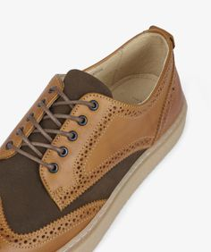 Fred Perry Davis Leather/ Halley Stevensons Shoe