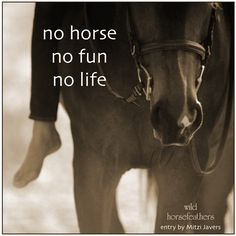 no horse, no fun, no life!   (a Wild Horsefeathers Six Word Story entry by Mitzi Javers)