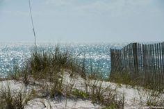 Beautiful Franklin County Florida @UniverOneChurch ©2016 UniversalOneChurch.org