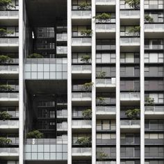 The Met by WOHA. One of the best residential projects ever.