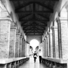 6.04pm. Vecchia Pescheria, Rimini. #adrimob - Instagram by @Bridget Sutton Traveller