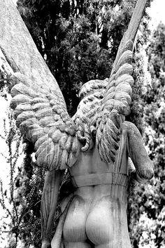 Cimitero Acattolico by spacedlawyer, via Flickr