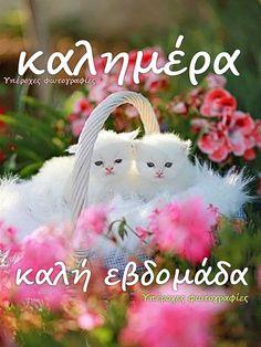 Good Night, Good Morning, Christmas Ornaments, Holiday Decor, Anastasia, Nighty Night, Buen Dia, Bonjour, Christmas Jewelry