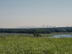 How the world's largest landfill became New York's biggest park
