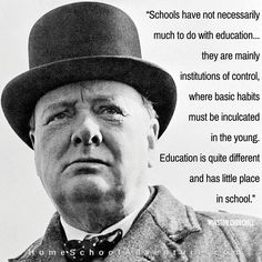 """Schools...are mainly institutions of control...."""