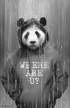 Cute Panda Wallpaper For Android Cute Panda Wallpaper, Panda Wallpapers, Panda Art, Panda Love, Bear Art, Illustration, Fantasy Art, Pop Art, Graffiti