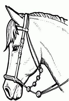 Ausmalbilder Pferde | - 2 - Ausmalbilder Pferde Kostenlos Zum Ausdrucken