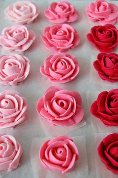 royal icing roses -would be cute to cover a cake with. or cupcakes? Cake Decorating Tips, Cookie Decorating, Decorating Supplies, Cake Icing, Cupcake Cakes, Icing Cupcakes, Frost Cupcakes, Pastry Bags And Tips, Royal Icing Flowers