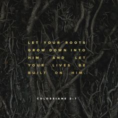 As ye have therefore received Christ Jesus the Lord, so walk ye in him:  Rooted and built up in him, and stablished in the faith, as ye have been taught, abounding therein with thanksgiving. Colossians 2:6-7 KJV
