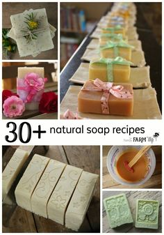 Learn to make natural handmade soap with this collection of tutorials, tips and recipes. All soaps are palm free, scented with essential oils and naturally colored with pure botanicals and beautiful clays.