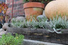 DIY Easy Flower Pot! Pic by Mrs Sinn Blog.