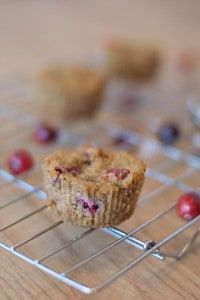 Cranberry Orange Muffins (AIP, Paleo) plus tips on baking with avocado