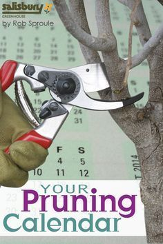 Your Pruning Calendar: Fall Pruning, Winter Pruning, Spring Pruning. By Rob Sproule, Salisbury Greenhouse