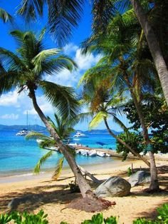 Tortola BVI my most favorite place to date.