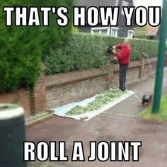 Check out: Funny Memes - Roll a joint. One of our funny daily memes selection. We add new funny memes everyday! Bookmark us today and enjoy some slapstick entertainment! Funny Shit, You Funny, Funny Jokes, Funny Stuff, Funny Things, Freaking Hilarious, Seriously Funny, Awesome Stuff, Random Things