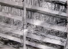 Tun / Old fence / Pencil drawing