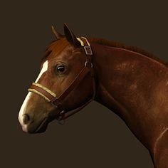 A comfortable sheepskin halter for your horses. (Released in the Equus Sims advent calendar) 3 channels: leather, metal and sheepskin package-file format, zipped Sims 3, Sims 4 Pets, Horse Mane, Equestrian, Horses, Advent Calendar, Geek, Leather, Facial