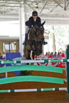 Beezie Madden Secures World Cup Spot With Final Qualifier Victory at Tampa Bay Classic