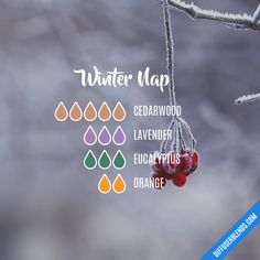 Winter Nap Essential Oils Diffuser Blend ••• Buy dōTERRA essential oils online at www.mydoterra.com/suzysholar, or contact me suzy.sholar@gmail.com for more info.