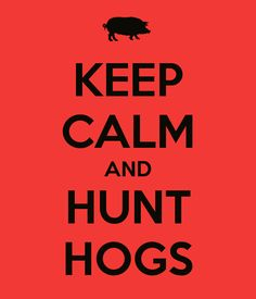 KEEP CALM AND HUNT HOGS. Another original poster design created with the Keep Calm-o-matic. Buy this design or create your own original Keep Calm design now. Hunting Jokes, Pig Hunting, Hunting Baby, Hunting Girls, Hunting Gear, Feral Pig, Wild Boar Hunting, Hog Dog, Southern Sayings