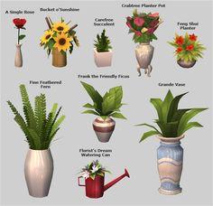 Veranka - 4t2 Plants pt. 1
