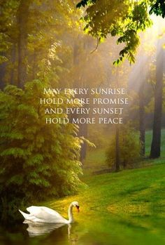 May every sunrise hold more promise and every sunset hold more peace ...