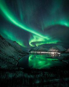 4,707 отметок «Нравится», 186 комментариев — Kim Jenssen (@kimjenssenphotography) в Instagram: «Classic spot at Senja but still a great place for watching the aurora dance..... Agree? . . Canon…»