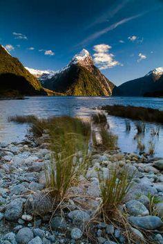 Binsen, Milford läuten, Fiords, Fiordland-Nationalpark, Fiord