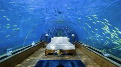 Underwater bedroom at The Conrad Maldives Rangali Island Hotel in the Indian Ocean. Wow.