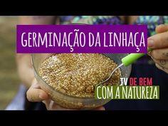 Por Conceição Trucom http://www.docelimao.com.br Acesse as informações adicionais desse vídeo no link abaixo: https://www.docelimao.com.br/site/videodicas/26...