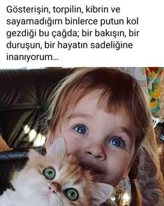 Sentences, Cats, Allah, Animals, Beautiful, Frases, Gatos, Animales, Animaux