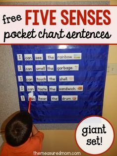 Get this free five senses pocket chart activity for learning about the five senses in preschool and kindergarten! Five Senses Preschool, 5 Senses Activities, My Five Senses, Kindergarten Science, Kindergarten Literacy, Teaching Science, Science Activities, Teaching Reading, Science Vocabulary
