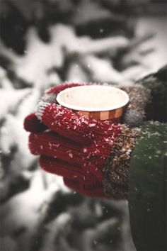 Yule ★ Winter Solstice ★ Rest                                                                                                                                                                                 More