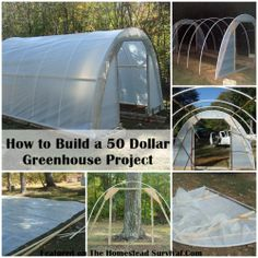 The Homestead Survival | How to Build a $50 Greenhouse Project | http://thehomesteadsurvival.com