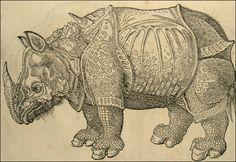 Le rhinocéros de Dürer - (Courtoisie du Service Interétablissements de Coopération Documentaire, Universités de Strasbourg) - L'histoire naturelle : de l'Antiquité à la Renaissance