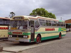 Local bus company been going since I was little. Im now .........that old  :-)
