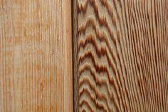 Die Maserung. Die Holzmaserung.