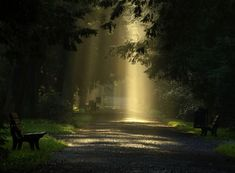 LIGHT OF PEACE