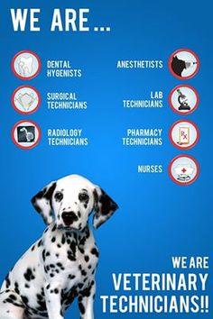 We are Veterinary Technicians !!!