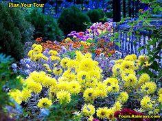 Tourist Attraction India: Municipal Gardens Mussoorie