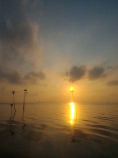 Pantara Sunrise 3
