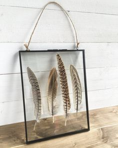 Four beautiful pheasant feathers framed in a large hanging glass photo frame to really show the beauty of the feathers. This product is sleek and modern yet natural and rustic therefore would look great in any home. Please note that each frame is handmade and unique therefore the feathers may vary from shown Dimensions: 8inch x 10inch