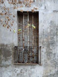 p-lanet-e-arth:  Antique Grey by Myunglim.Lee