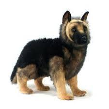 Resultado de imagen para imagenes de moldes de peluches de perro siberiano